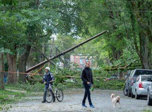 A street is blocked by fallen trees in Halifax-Milenio Stadium-Canada