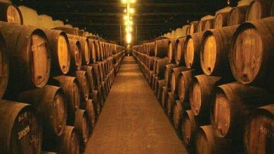 Livro sobre vinhos portugueses com capítulo de Vinho Madeira-madeira-mileniostadium