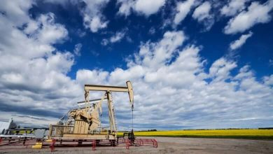 Three-quarters of oil and gas sector jobs could be displaced by 2050 in move to cut emissions- TD report-Milenio Stadium-Canada